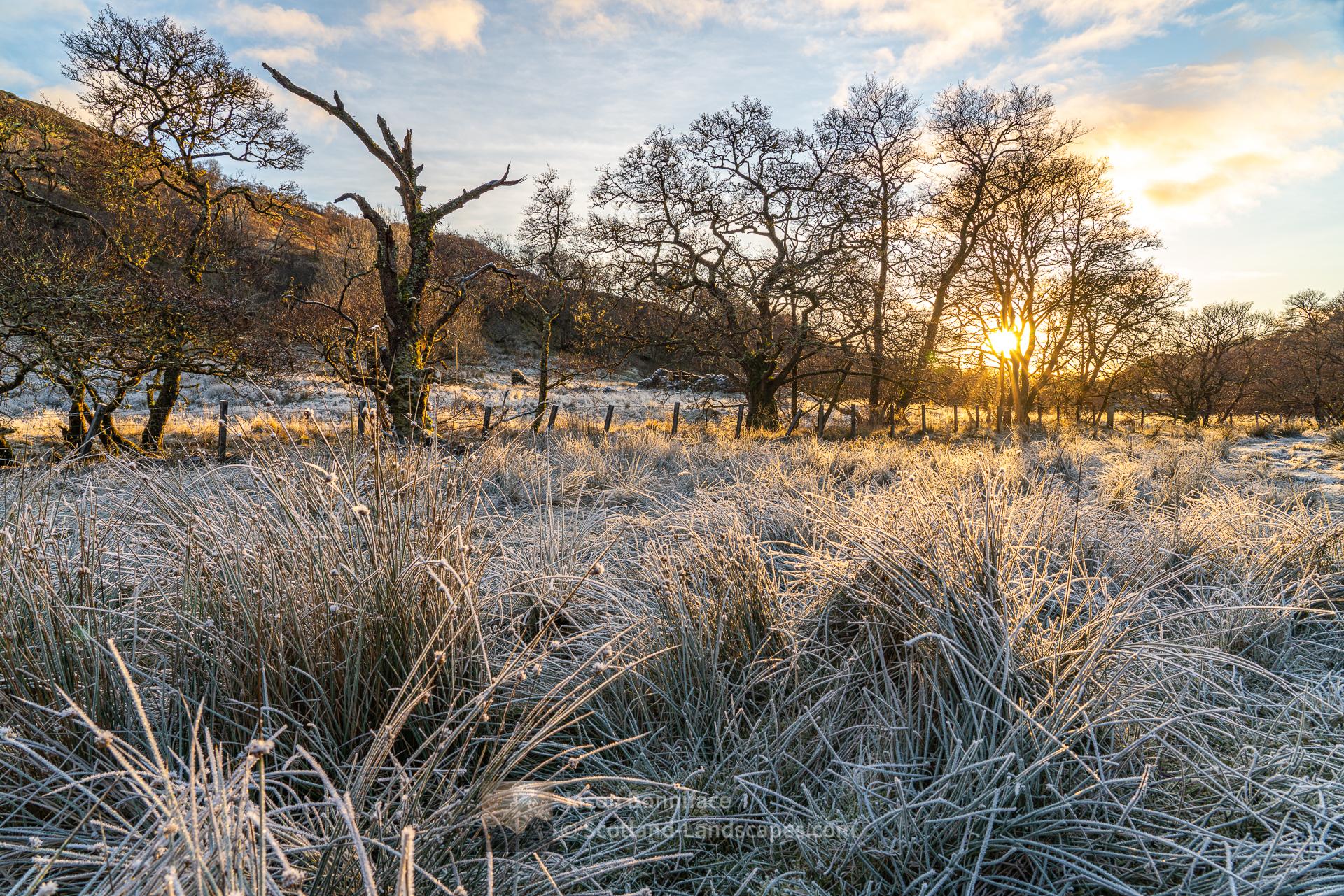 Glen Stockdale Afternoon Frost, Lochaber