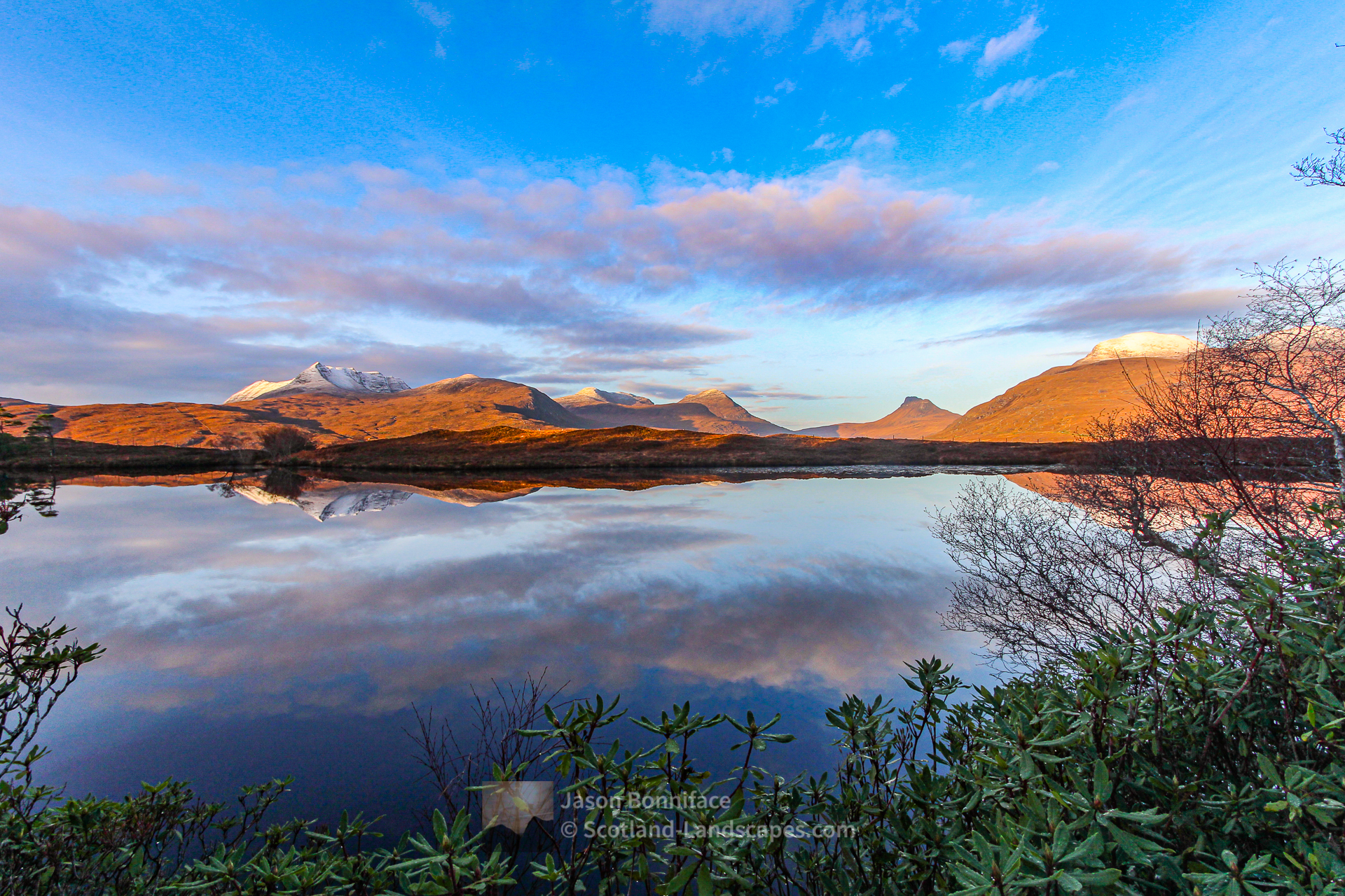 A December Morning in the Rhododendrons - Ben More Coigach, Stac Pollaidh and Cul Beag, Assynt & Ullapool