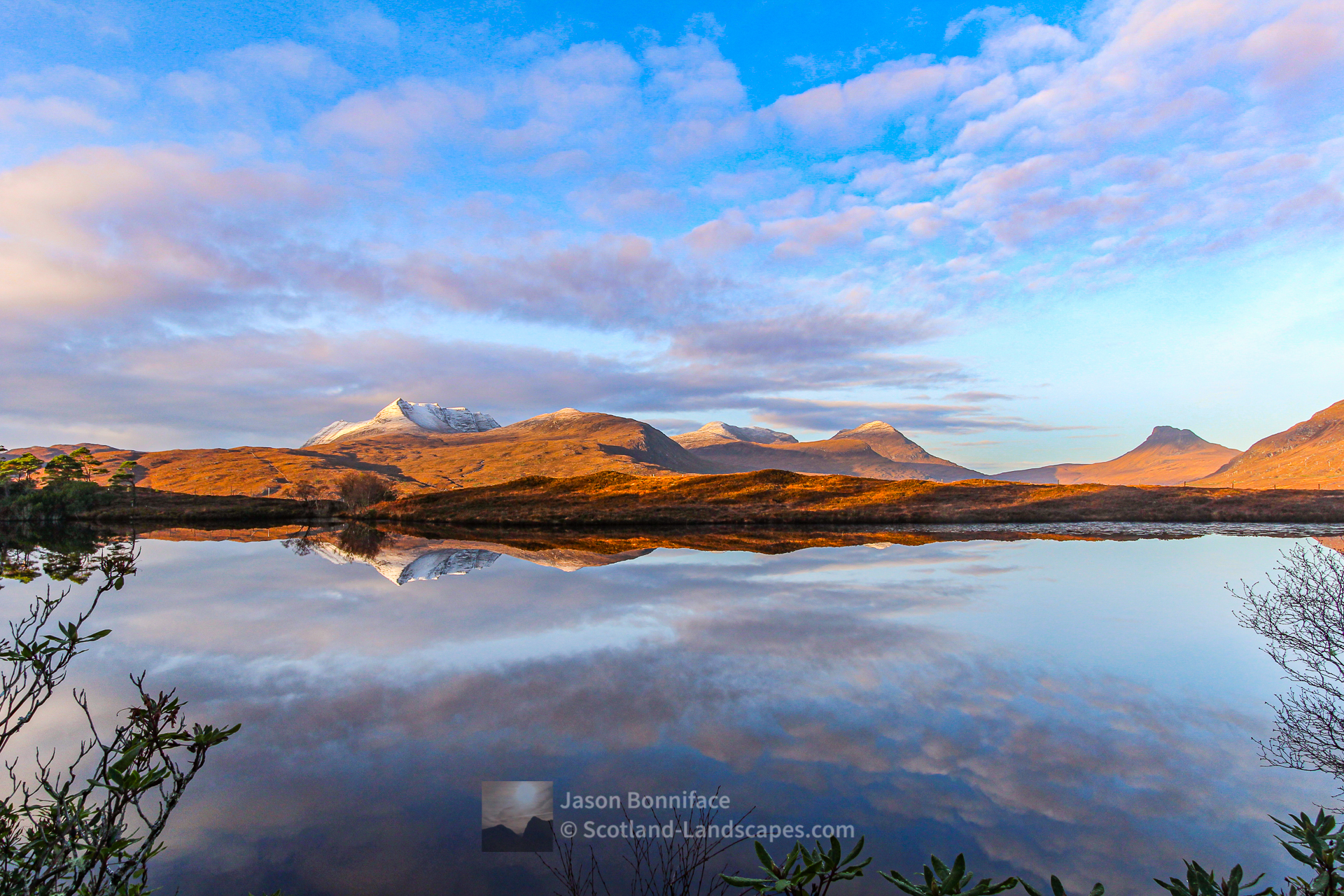 A December Morning in the Rhododendrons - Ben More Coigach and Stac Pollaidh