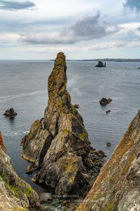 The Outrageous Gordi Stack and The Drongs off of the Ness of Hillswick, Shetland